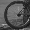 Trailforks Stats - last post by pilznr