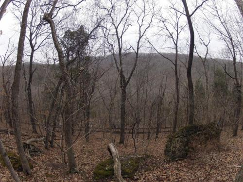 Rock Hollow Trail Build - view from the top 3-29-14.jpg