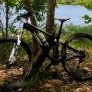 2015 TREK FUEL EX 8 (29er) - last post by rjmbrown